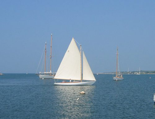 Buzzards Bay 25 Epiphany (Now Souzie) (2004)